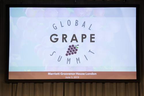 LPS 19' Grape Summit (1)