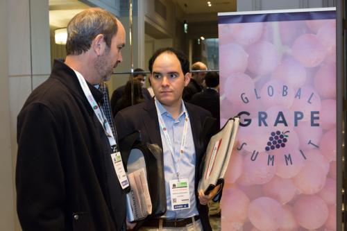 LPS 19' Grape Summit (15)