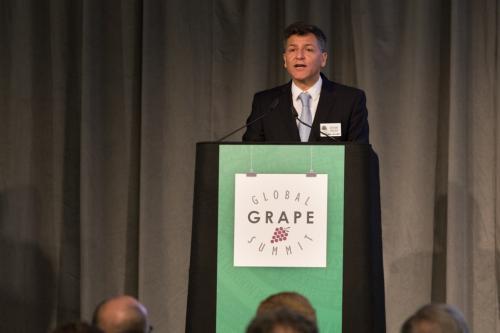 LPS 19' Grape Summit (19)