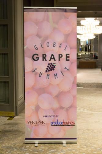 LPS 19' Grape Summit (2)