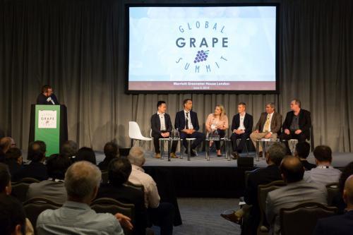 LPS 19' Grape Summit (37)