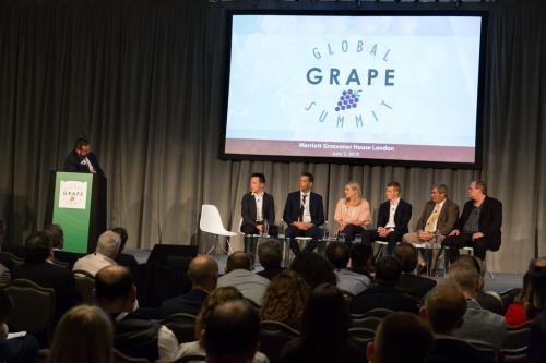 LPS 19' Grape Summit (42)