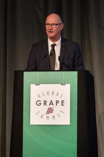 LPS 19' Grape Summit (59)
