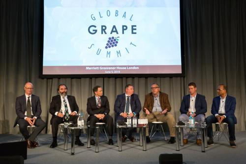 LPS 19' Grape Summit (63)