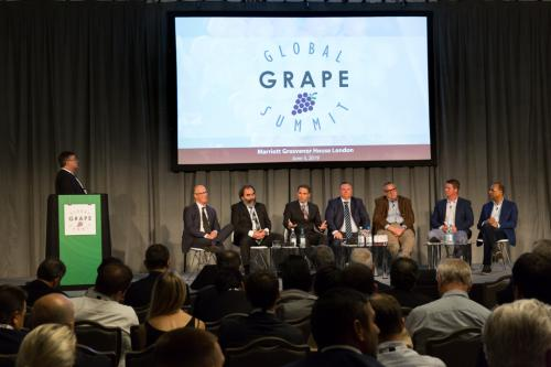 LPS 19' Grape Summit (67)
