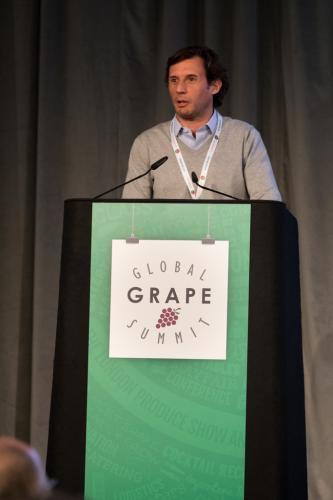 LPS 19' Grape Summit (81)