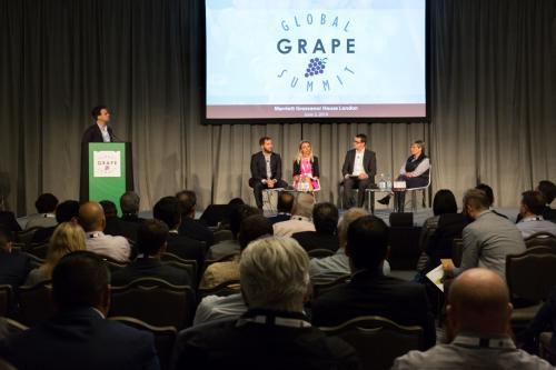 LPS 19' Grape Summit (98)